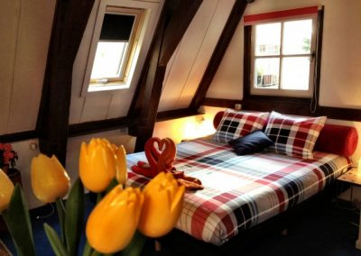 K2 Bed with Yellow Tulip
